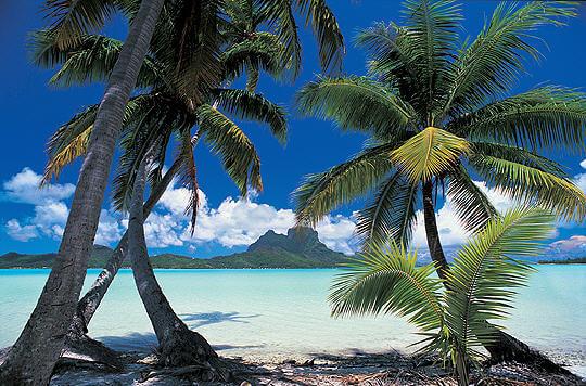Brevet 2014 Polynésie - Sujet de mathématiques corrigé